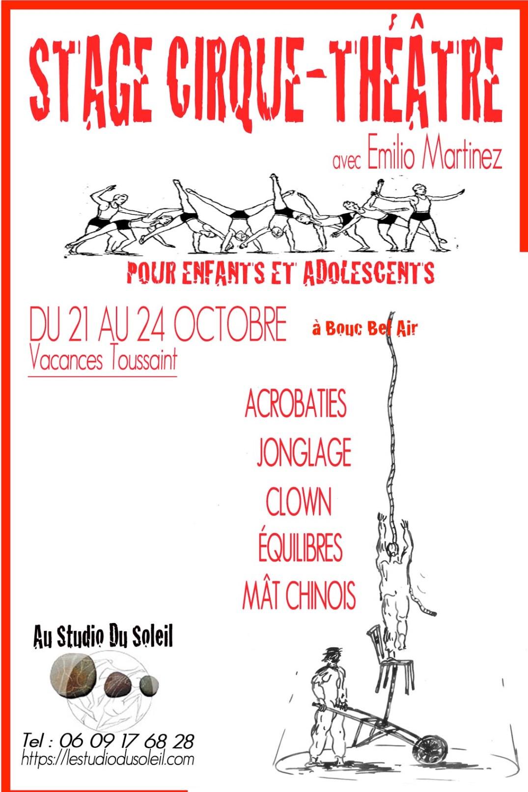 Stage Cirque -Théâtre